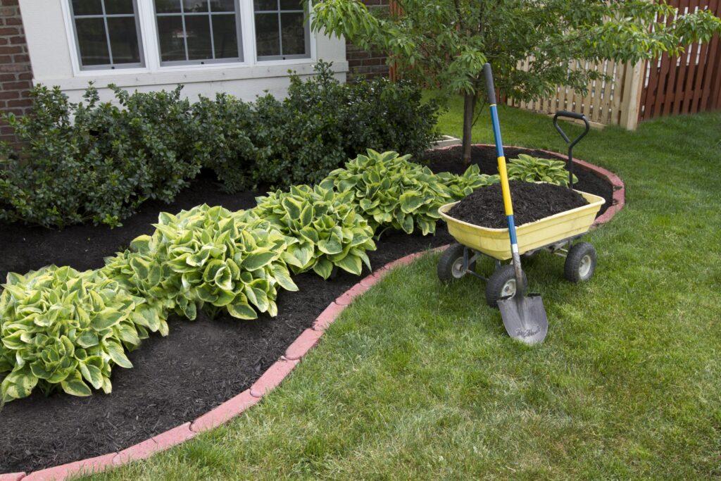 a nice looking garden